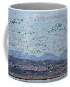 Spring Migration #1 Coffee Mug