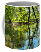Spring Mill Reflections Coffee Mug