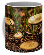 Spring Mushrooms Coffee Mug