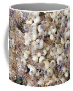Spring Onions At The Market Coffee Mug by Michelle Calkins