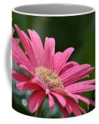 Spring Pink 2014 Coffee Mug