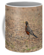 Spring Robin 2014 Coffee Mug