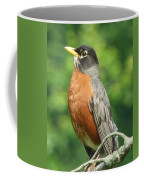 Spring Robin Coffee Mug