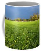 Spring Scenery Coffee Mug