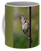 Spring Titmouse 1 Coffee Mug