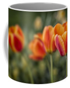 Spring Tulips Coffee Mug by Adam Romanowicz