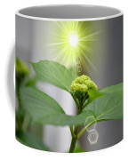 Spring Unfolding Coffee Mug