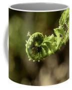 Spring Unfurled Fiddlehead Coffee Mug