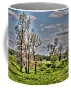 Spring Valley Coffee Mug
