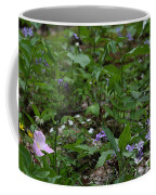 Spring Wildflowers Along Panther Branch Trail Frozen Head Tennessee State Park Tennessee Coffee Mug