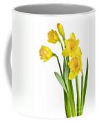 Spring Yellow Daffodils Coffee Mug
