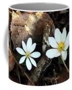 Spring's Bloom Coffee Mug