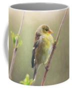 Springtime Goldfinch Coffee Mug