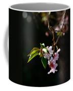 Springtime In Napa Ca Coffee Mug