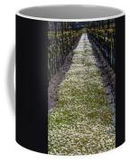 Springtime In The Vineyards Coffee Mug