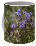 Springtime Tiny Bluet Wildflowers - Houstonia Pusilla Coffee Mug