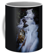 Springtime Waterfall Coffee Mug