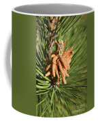 Sprintime Pine Coffee Mug