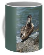 Sprucing Pelican Coffee Mug