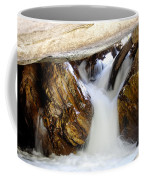 Spun Silk - Sequoia National Park Coffee Mug