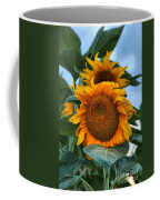 Squamish Sunflower Portrait Coffee Mug