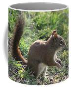 Squirrel And His Sunflower Seed Coffee Mug