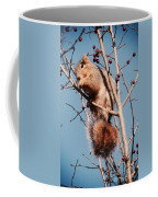 Squirrel Berry Coffee Mug