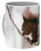 Squirrel In Winter Coffee Mug