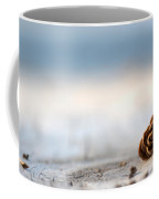 Squirrel Leftovers Coffee Mug