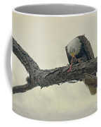 Squirrel Lunch Coffee Mug