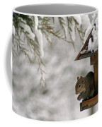 Squirrel On The Bird Feeder Coffee Mug