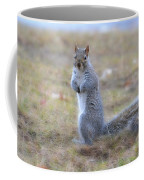 Squirrel With Dirt On Nose Coffee Mug