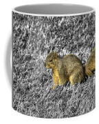 Squirrling Around Looking For Nuts Coffee Mug