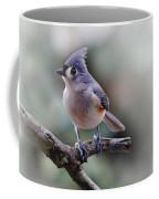 Sring Time Titmouse Coffee Mug by Skip Willits