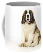St Bernard Dog Coffee Mug