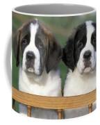 St. Bernard Puppies Coffee Mug