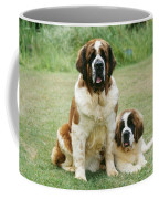 St Bernard With Puppy Coffee Mug