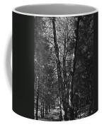 St-denis Woods 2 Coffee Mug