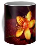 St. Johns Wort Coffee Mug