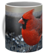 St. Louis Coffee Mug by Skip Willits
