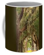 St Simons Island Oaks Coffee Mug