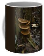 Stack Of Fungi Coffee Mug