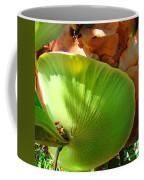 Staghorn Fern Butt Coffee Mug