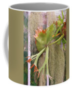 Staghorn Fern Coffee Mug