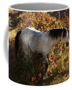 Stallion Of The Badlands Coffee Mug