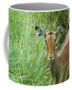 Standing In The Grass Impala Antelope  Coffee Mug