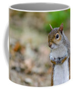Standing Squirrel Coffee Mug