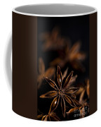 Star Anise Study Coffee Mug