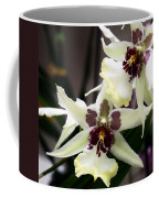 Star Orchids Coffee Mug