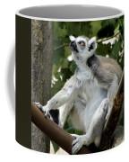 Lemur Stare Coffee Mug